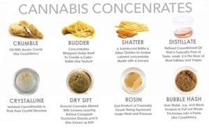MMJ cannabis concentrates