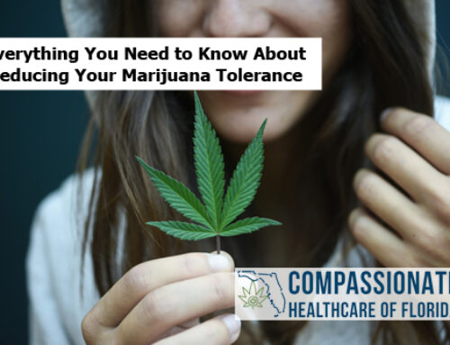 Everything You Need to Know About Reducing Your Marijuana Tolerance